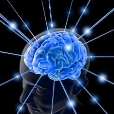 تفاوت های راست مغزها و چپ مغز ها