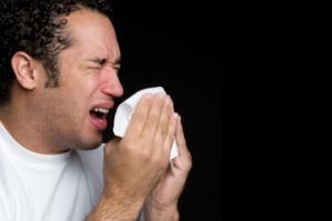 آلرژی فصلی و گیاهان دارویی برای درمان آن
