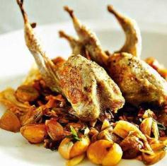 فواید گوشت انواع پرندگان