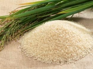 برنج و فواید آن برای سلامتی