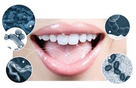 باکتری های دهان